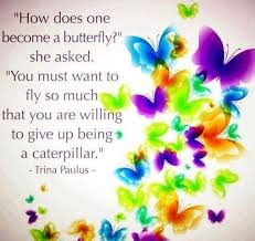 BUTTERFLY QUOTE - YOU MUST WANT TO FLY SO MUCH