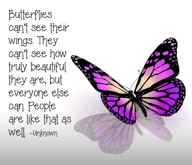 BUTTERFLY QUOTES - BUTTERFLIES CAN'T SEE THEIR WINGS B