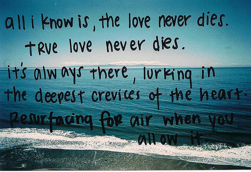 All-I-Know-Is-The-Love-Never-Dies