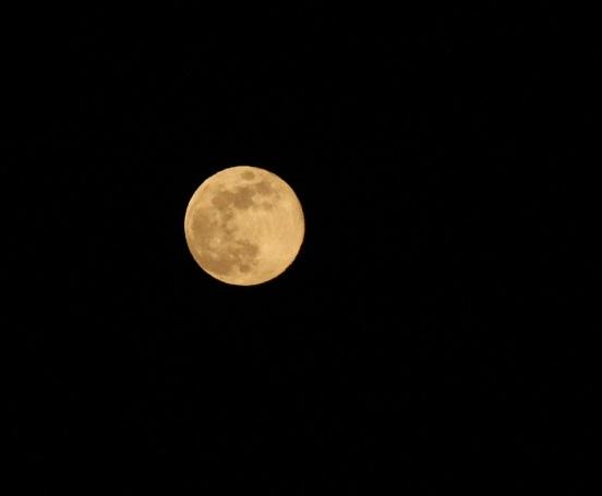 pink moon 2