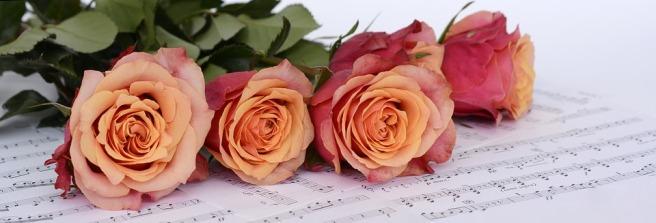 roses-2366341_960_720.jpg