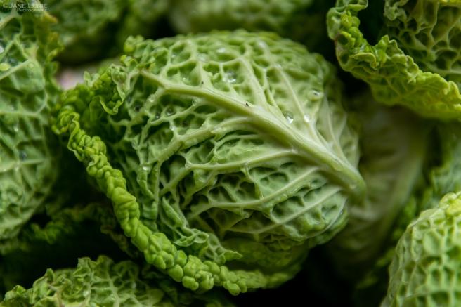 San Francisco, California, Farmers' Market, Produce, Close-Up, Organic, Farm, Photography