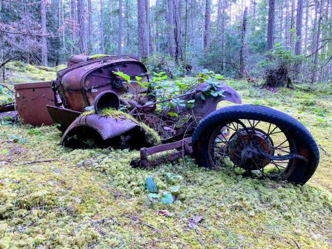Old model A rusting away - Marc Andrew