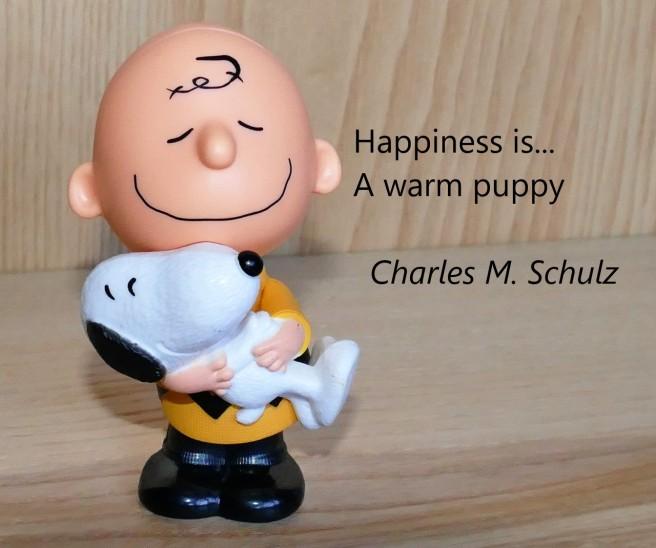 charlie-brown-snoopy-warm-puppy.jpg