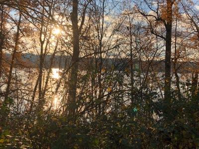 november poetry 2019 fall waters