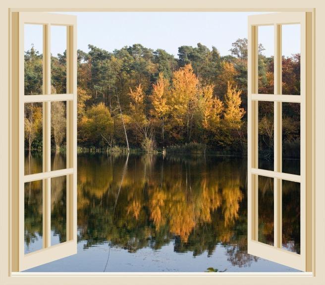 autumn-211800_1280.jpg