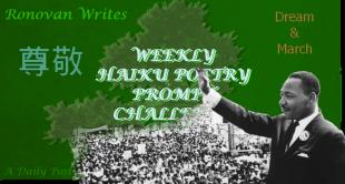 MLK image for haiky challenge