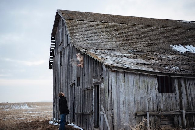 three line tales, week 207: a man talking to a woman looking out of a barn