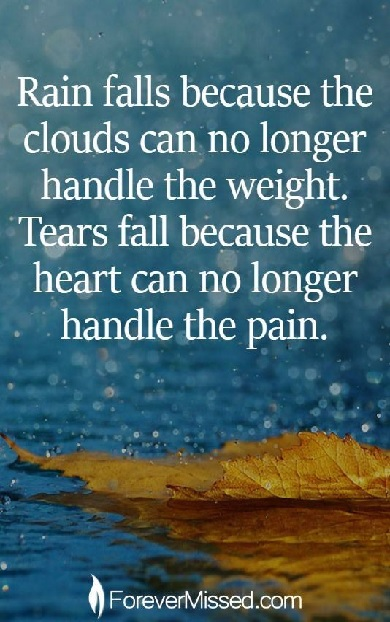 QUOTE - TEARS FALL BECAUSE -