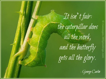 george-carlin-life-quotes CATERPILLAR AND BUTTERFLY