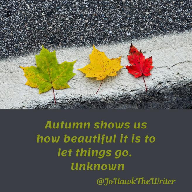 autumn-shows-us-how-beautiful-it-is-to-let-things-go.-unknown.