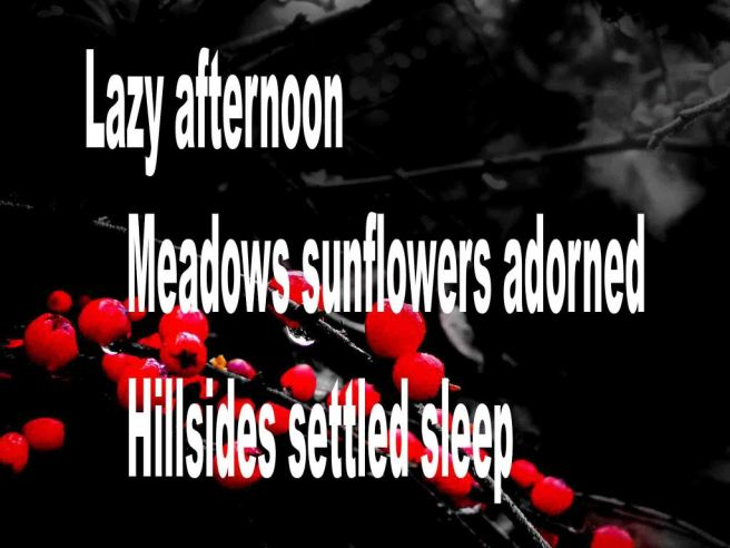 The image shows a spray of red berries on a black background on which a haiku titled Lazy Afternoon is written. The poem speaks of a lazy, hazy summer's afternoon, fields filled with sunflowers and the rising hills settled into a mid afternoon siesta.